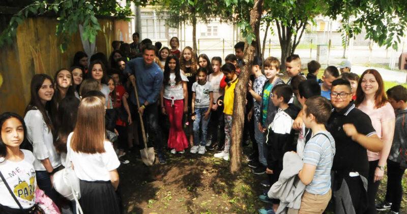 Временска капсула закопана испод дрвета петака